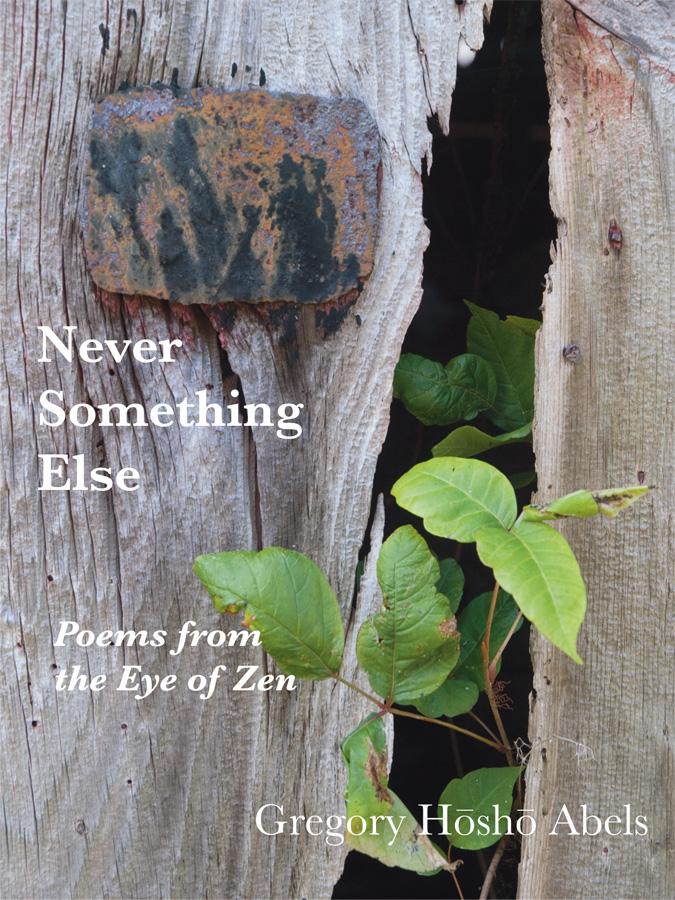 """Never Something Else"" by Sensei Gregory Hosho Abels"